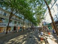 奥地利维也纳着力打造绿色城市
