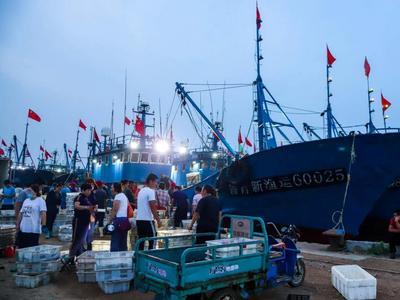 """渔业发展""""哪家强""""?市统计局发布胶东经济圈五市渔业发展对比分析"""