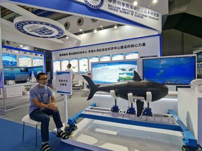 观光潜水器、水下机器人、超大型船舶……记者探营2020中国海洋经济博览会