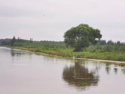鼓励社会大众积极参与河湖问题监管,山东正研究制定有奖举报办法