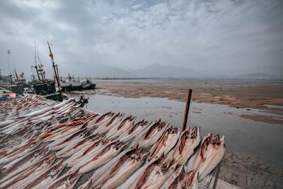 打好近岸海域环境综合治理攻坚战!崂山14处渔港环境综合整治全部完成