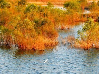 """河湖长制从""""有名到有实""""!青岛这些农村河湖划定管理保护范围"""