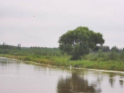 大沽河、白沙河、李村河……青岛20条美丽示范河湖建设完成市级审验