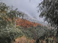 崂山雪景惊艳上线!这是最让人期盼的冬景