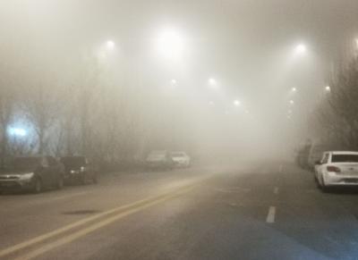 山东继续发布大雾橙色预警!局部地区能见度不足50米,多条高速关闭