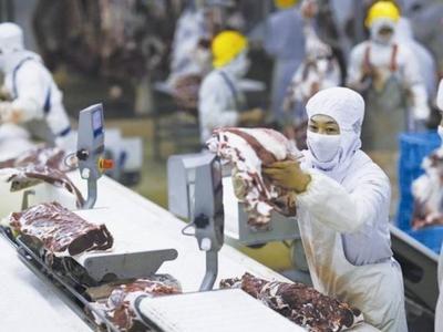 浙江发现一份巴西进口冷冻猪肉标本新冠病毒呈阳性