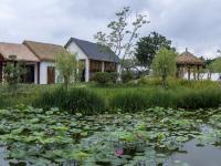 建设乡村振兴示范片区 让美丽乡村再升级——乡村振兴系列(20)