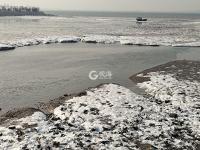 青岛今天有多冷?连大海都结冰了!
