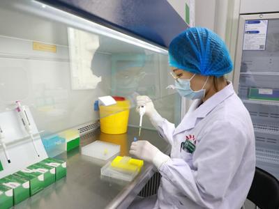 兰州大学研发世界首个新冠疫情全球预测系统