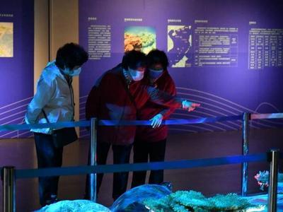 水下文化遗产、革命文物、浮世绘……2021年市博物馆安排了这些展览