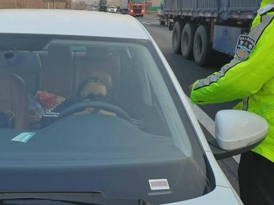"""为""""任性""""买单!""""新手""""司机违停高速酣睡,距离前方一公里就是收费站出口"""