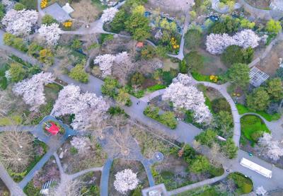 绝美航拍:这哪是中山公园?这是童话庄园