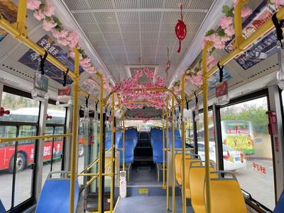 盎然春色尽收眼底!青岛樱花车厢带你遇见美丽花海
