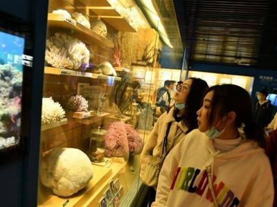 清明小长假首日,青岛室内景区人气旺!71家景区营业收入223.11万元
