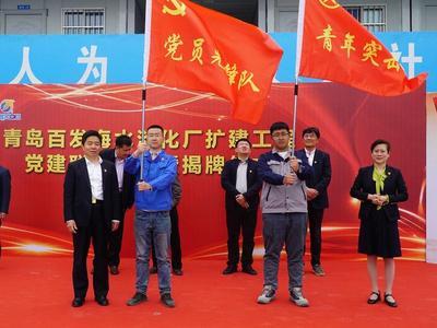 四方共建,青岛百发海水淡化厂扩建工程党建联建办公室成立