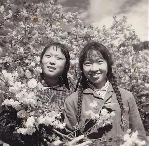 城市影像档案|回望中山公园百年樱花会