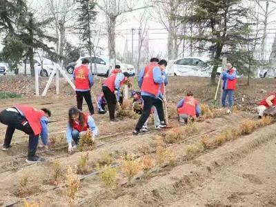 青岛市第二届新时代文明实践志愿服务项目创益大赛启动,快来报名!