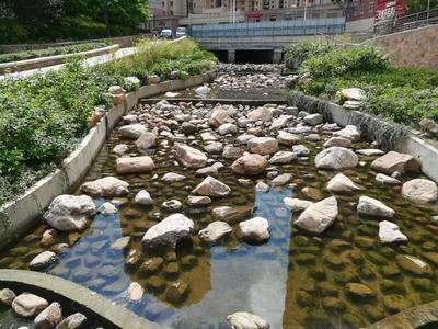 11处全部达标!4月份青岛城市黑臭水体水质监测结果公布