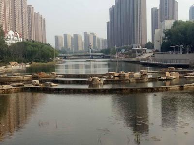 青岛这些重点水利工程在全省劳动竞赛中获奖