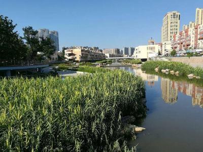 山东发文:年底前,各市完成不少于10条省级美丽幸福示范河湖建设任务