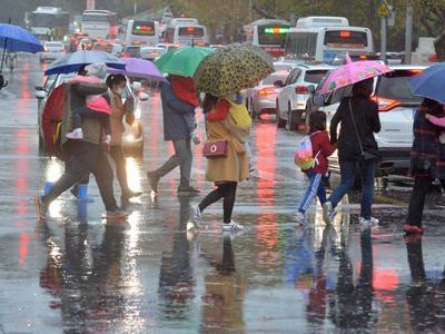 降雨+大雾!未来三天雨水频繁,青岛最高气温略降
