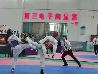 12枚金牌创历史最佳!青岛跆拳道称雄省锦标赛