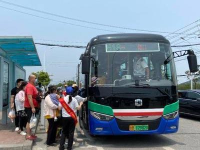 """百余名温馨巴士志愿者假期上岗,伴市民游客""""粽""""享美好出行"""