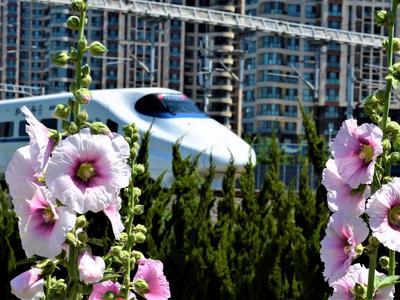 6月25日起铁路调图:青岛至银川首开高铁,至北京班次加密