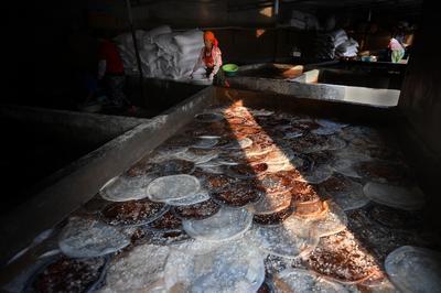 实拍:城阳红岛海蜇丰收季,打捞、分割、盐腌……就差你买回家吃啦!