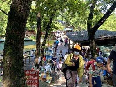 """青岛:对红黄码游客采取相应措施,停止前往中高风险地区""""机票+酒店""""业务"""