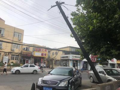 记者在现场 危险!路边电线杆倾斜近50度